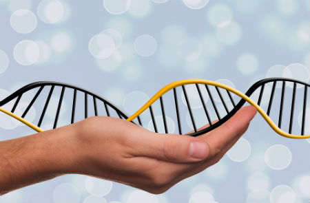 rappresentazione catena cromosomica